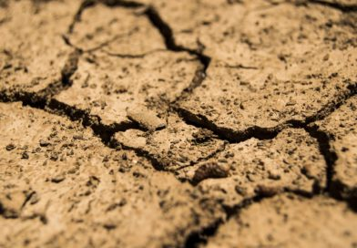 ⚠️ dégâts liés à la sécheresse 2020 – catastrophe naturelle ⚠️